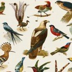 Singing Birds Help House Sales